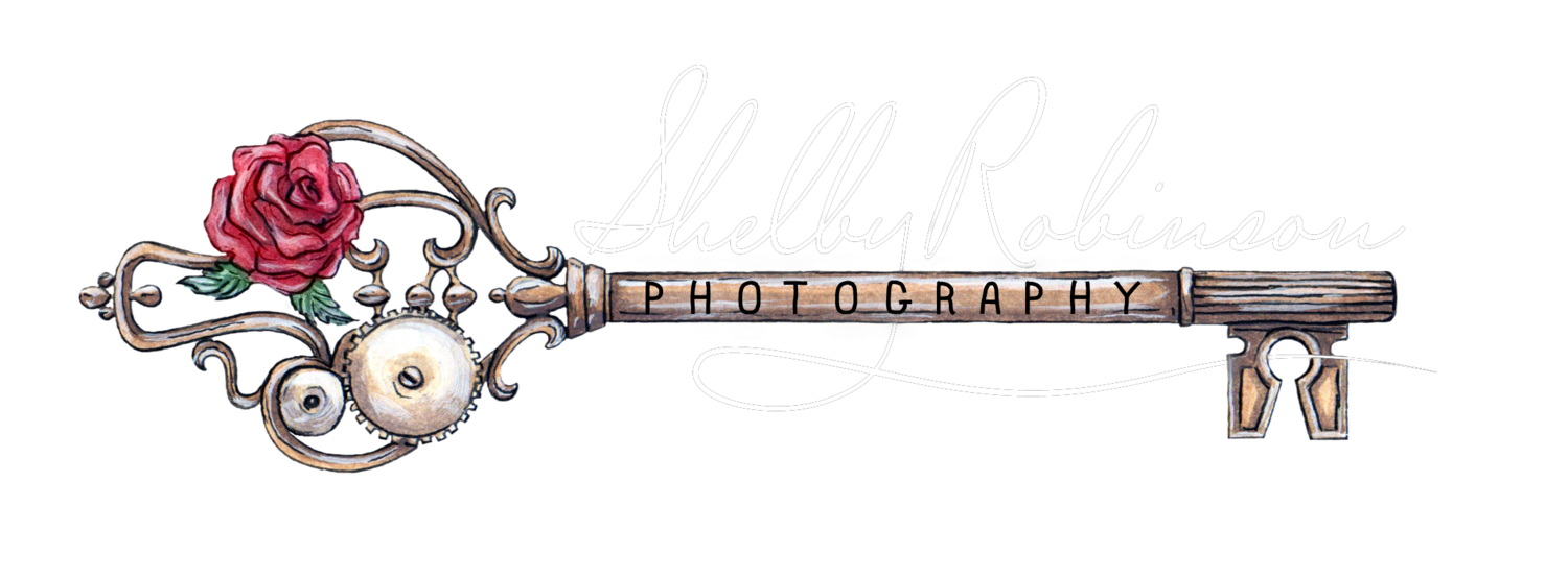 Shelby Robinson Photography