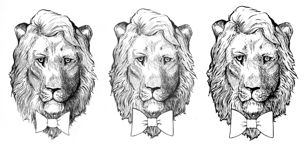 Progression of Tamed NY lion logo
