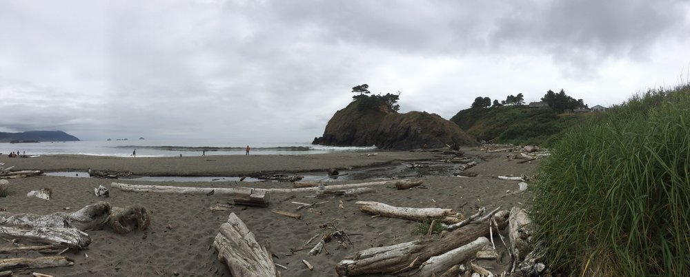 Panorama. Loved all the driftwood!