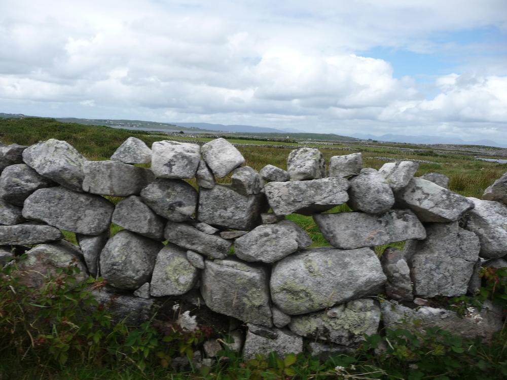 Mungo's favourite stone wall