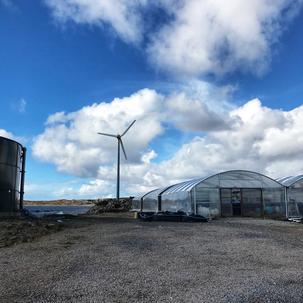 Visit Us - Explore our pioneering aquaculture farm on the shores of Connemara
