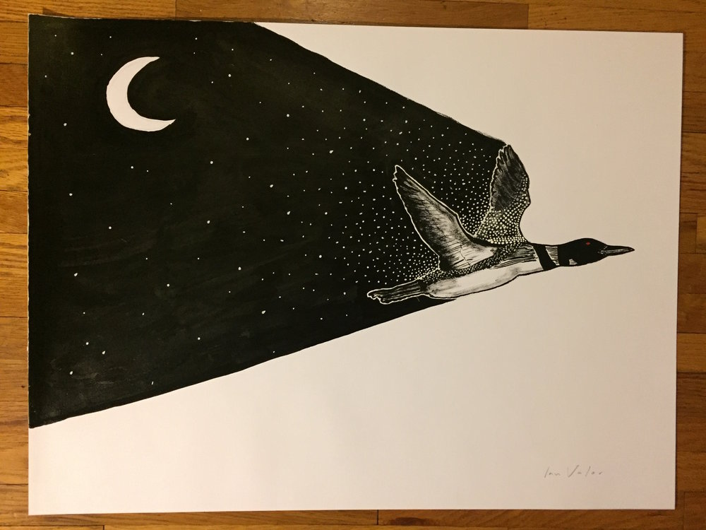 Loon Night Sky, 2016