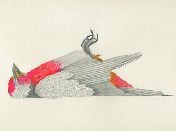 Mort, Gouache and graphite on paper, 2012 by: Lisa Congdon
