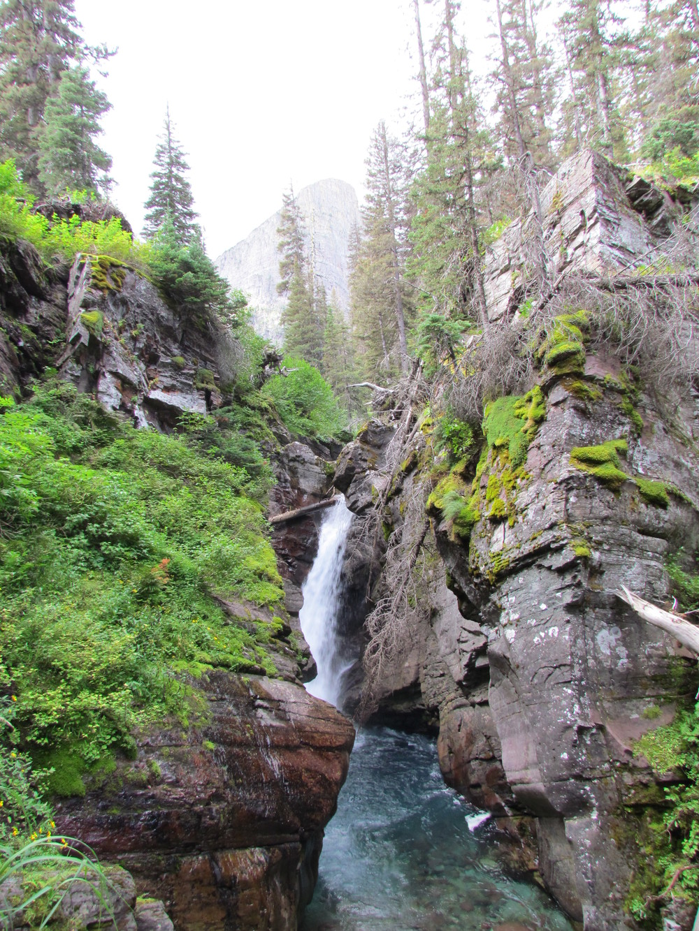 Hidden Falls in Many Glacier. Easy hike with berries along the way.