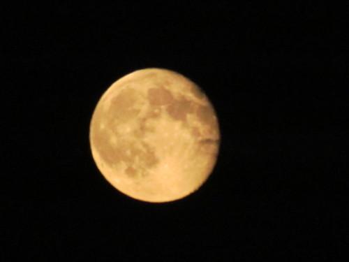 full+super+moon+2014.jpg