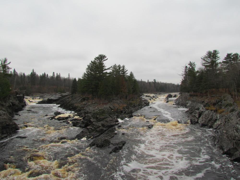 jaycooke-statepark-mn-river-split.jpg