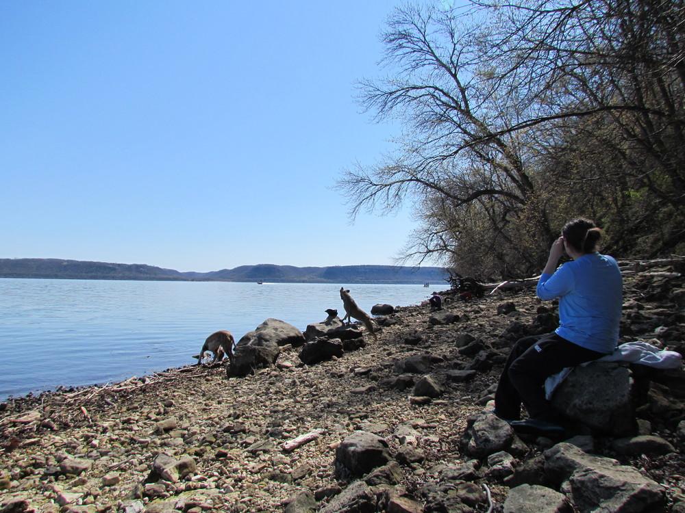 lake-pepin-shore-mn.JPG