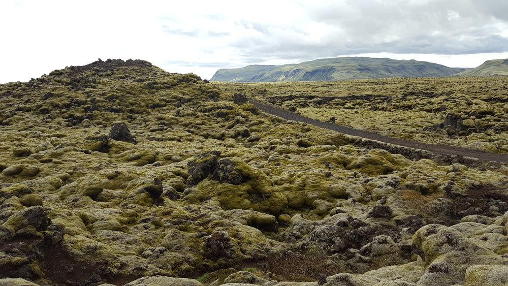 8 - lava fields.jpg