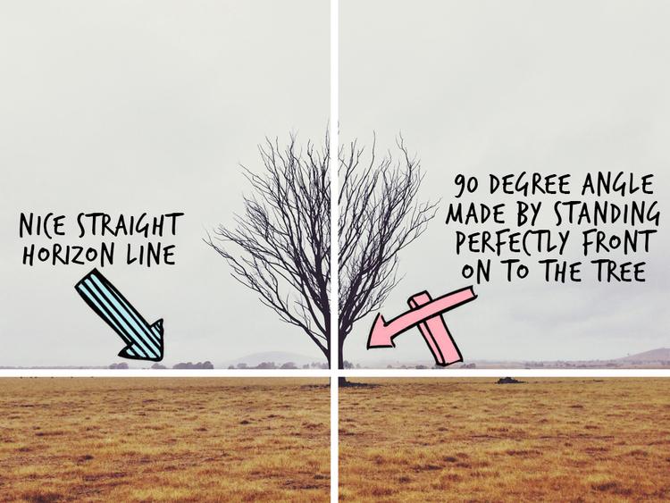 Lines-Example-1c.jpg