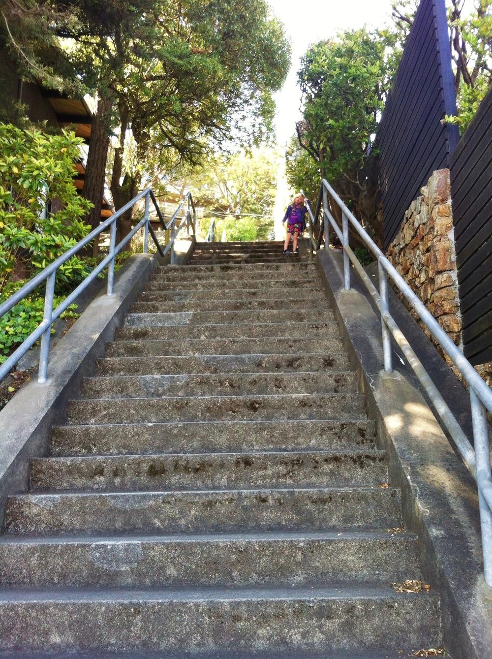 Cascade Steps