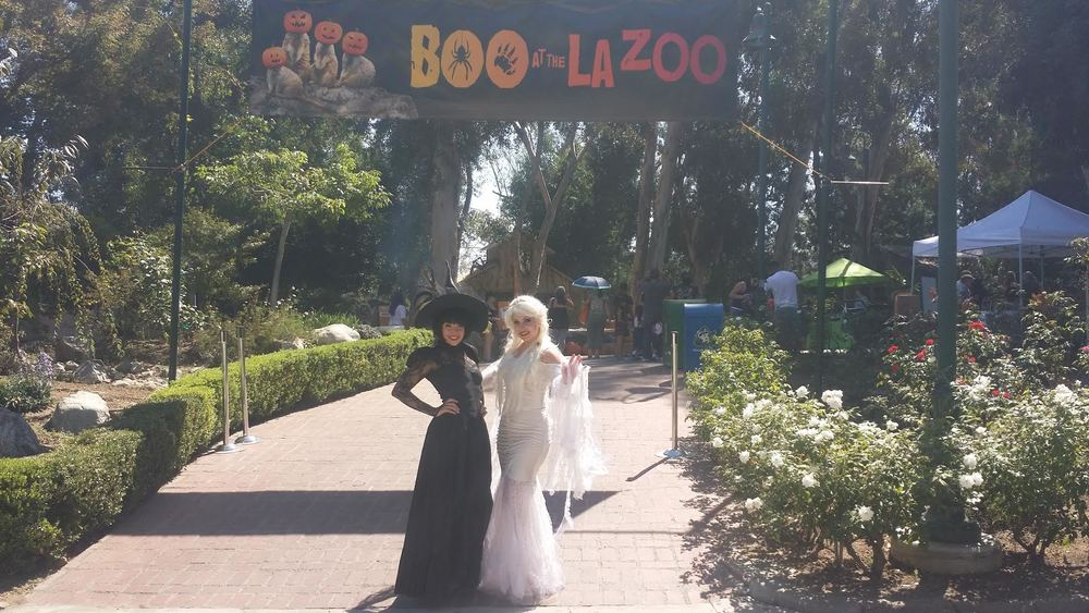 Guests will have the opportunity to interact with witches, goblins, and ghouls at 'Boo at the Zoo'!