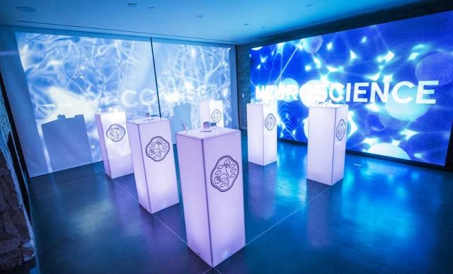 Atmosphere of the launch of Shiseido Essential Energy in Los Angeles. Photo credit:  Michael Bezjian/Getty Images for Shiseido
