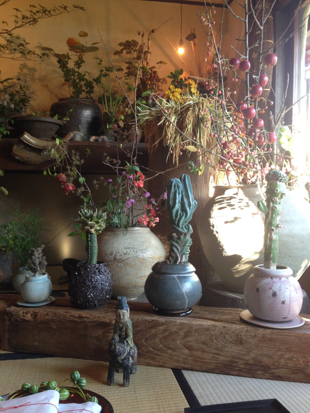 Mitate // Beautiful plant shop. Everything is foraged by the owner.