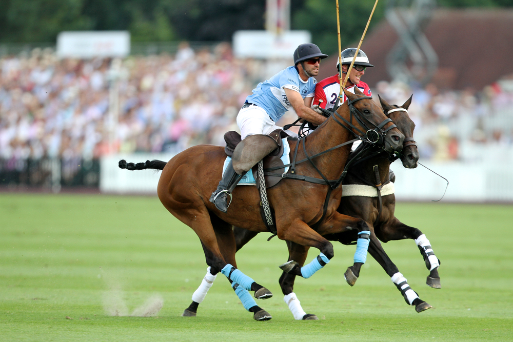Audi International, Guards Polo Club