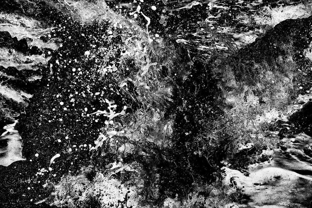 palm cove _ 2018