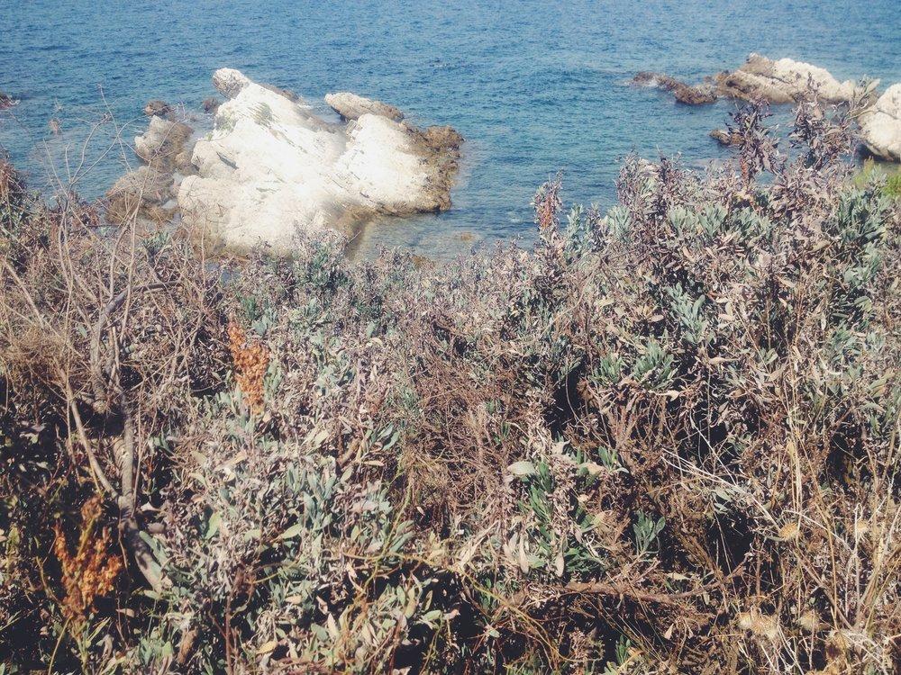 Baie des moines, îles de Leyrins, photographie numérique, 2014