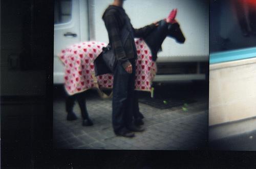 Paix en suisse, photographie argentique (lomo), 2011