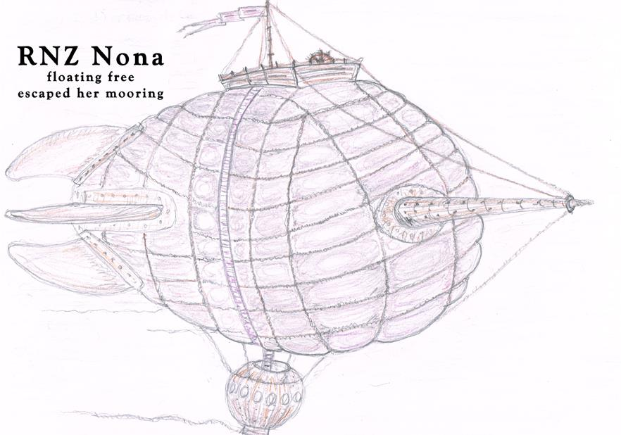 """The RNZ Nona"" by Fiona Sambrook"