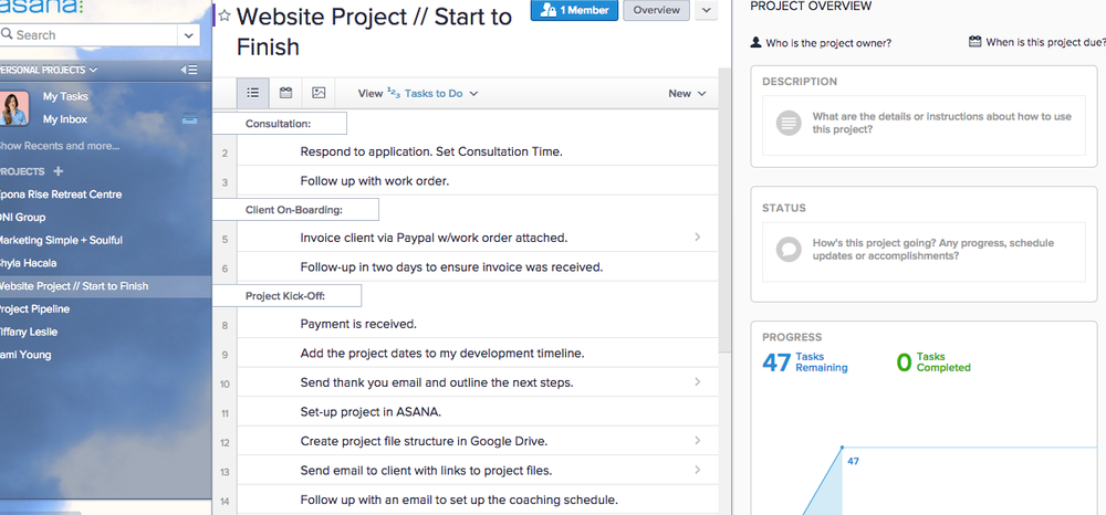 document your process using asana