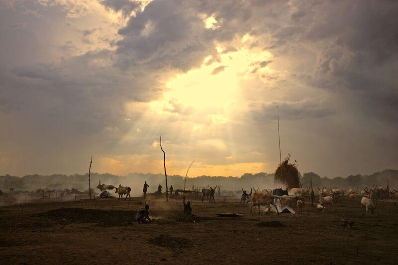 Mundari Cattle Camp.jpeg