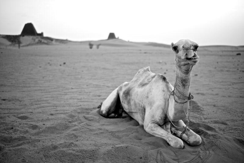 Gordon of Sudan.jpeg