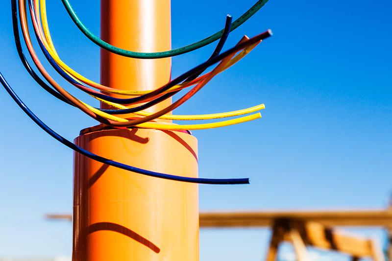Conser Wire Art
