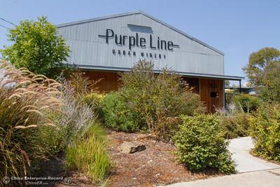 PurpleLineWinesEB5-S.jpg