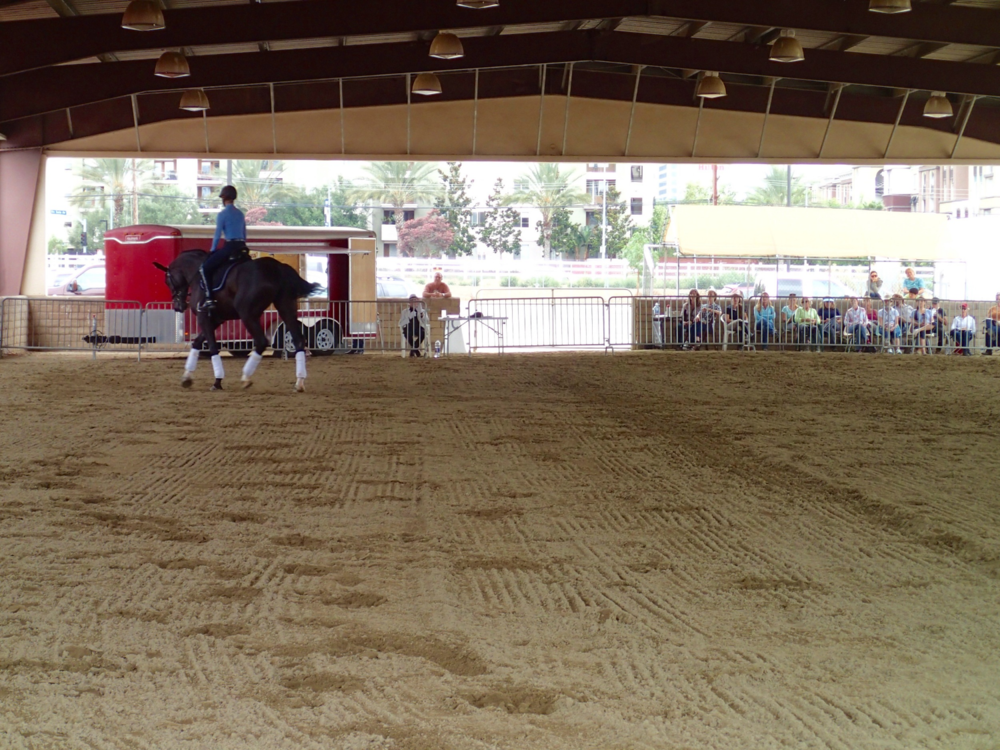 Seminar held in the covered arena