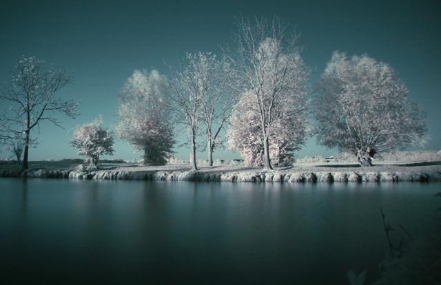 Port Meadow in Winter