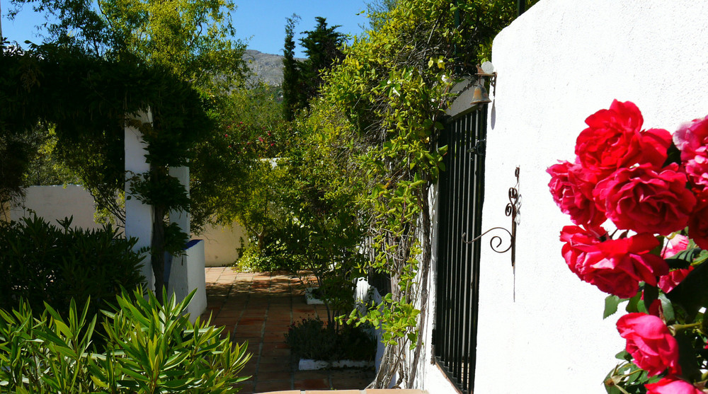 Relaxing holidays: shady vine covered terraces and sunny gardens with roses and the scent of jasmine at Villa Amapola