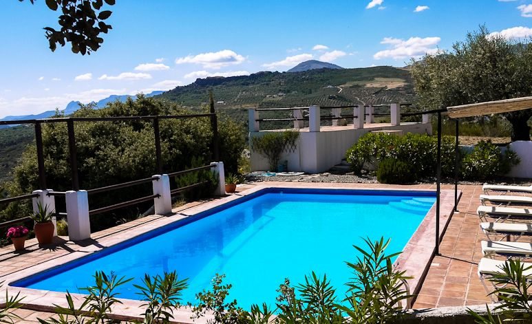 The private swimming pool at Villa Amapola is set in the olive groves above the house.