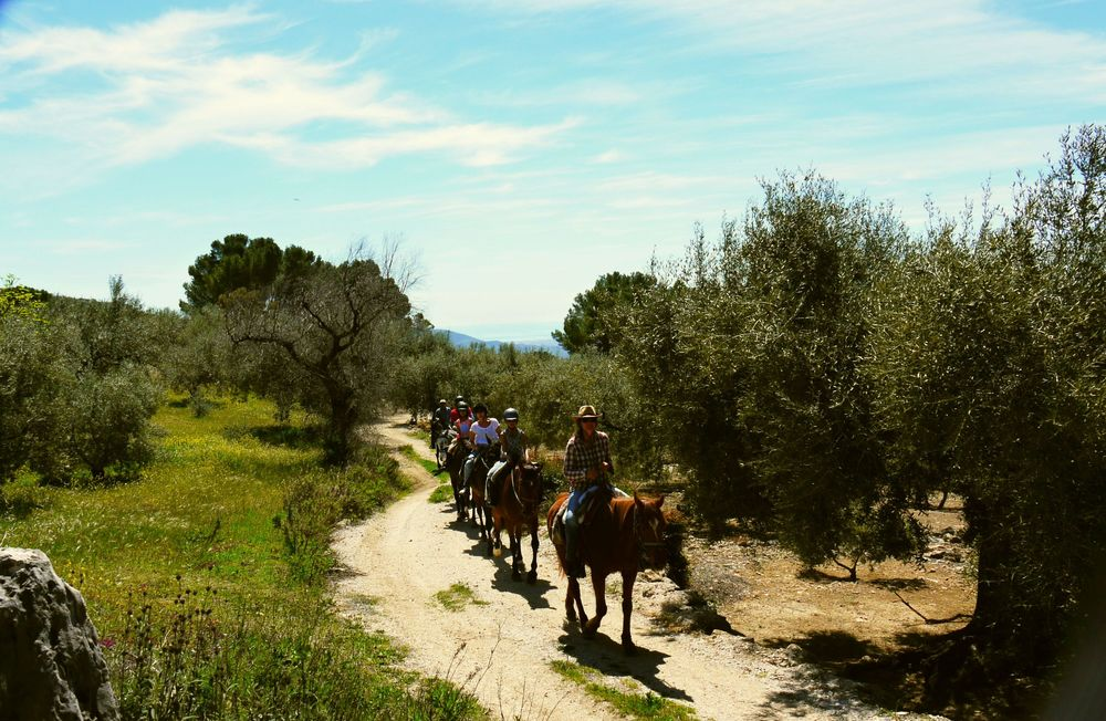 "Horse riding on the country tracks and ""carriles"" around Villa Amapola, near the village of Periana."