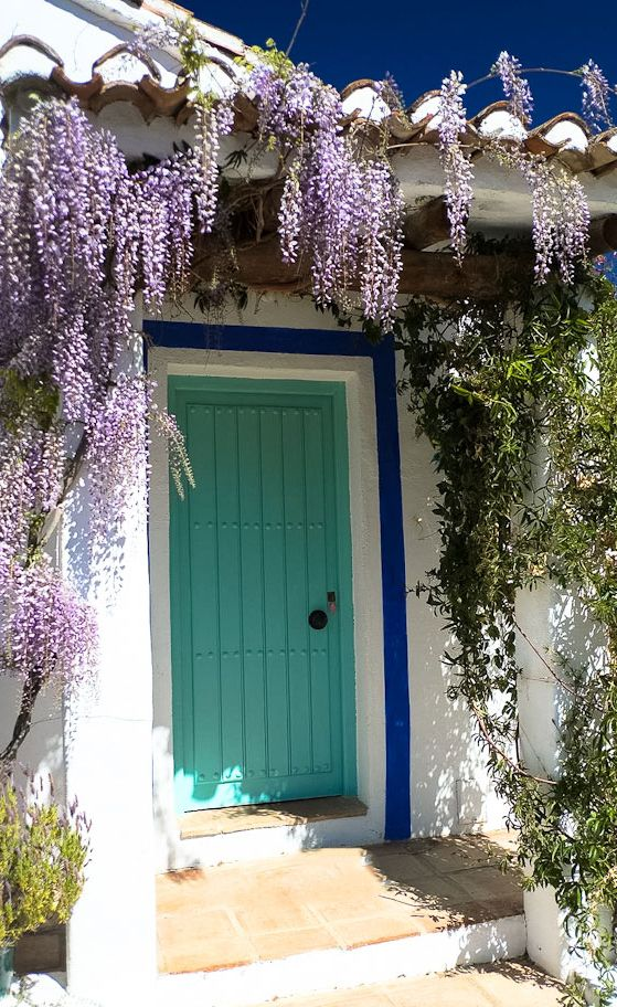 Entrance to the cortijo, draped with wisteria, jasmine and passion flower.
