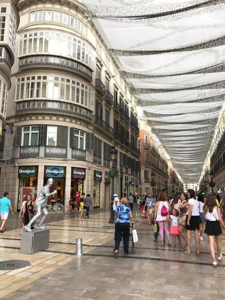 Shopping in Calle Larios