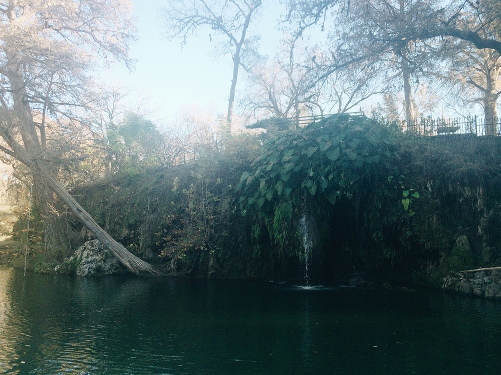 Krause Springs, TX