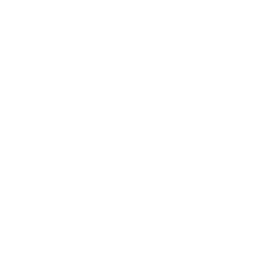 SnyderPM Web Logo.png