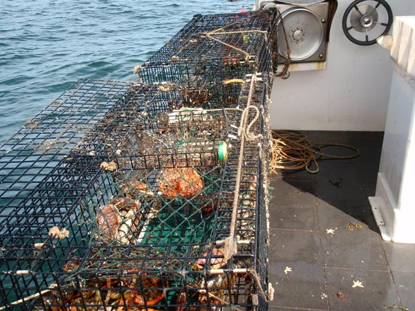 fishing---26.jpg