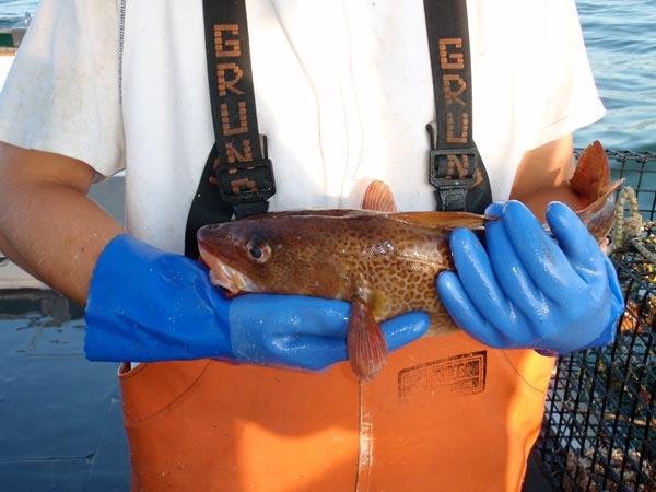 fishing---48.jpg