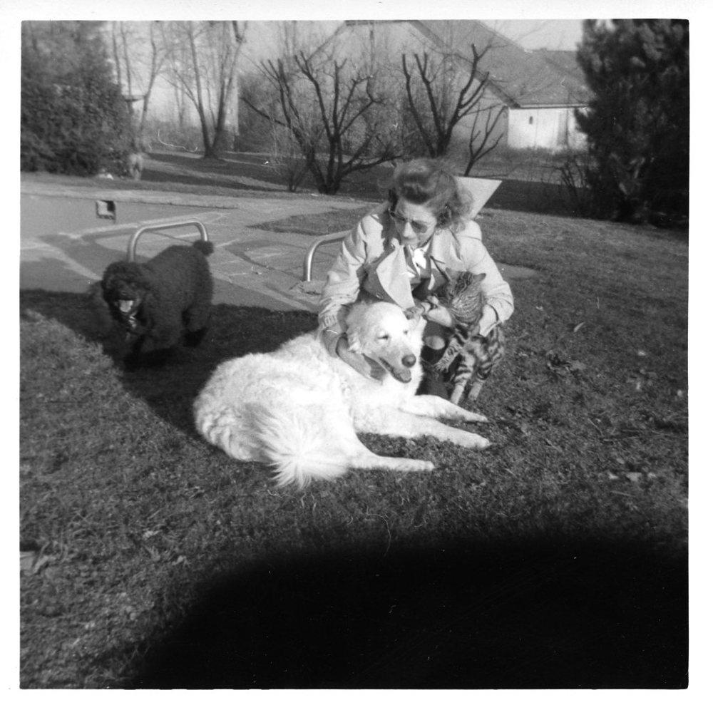 Mrs Sizzle Pamela Hanson dog.jpg