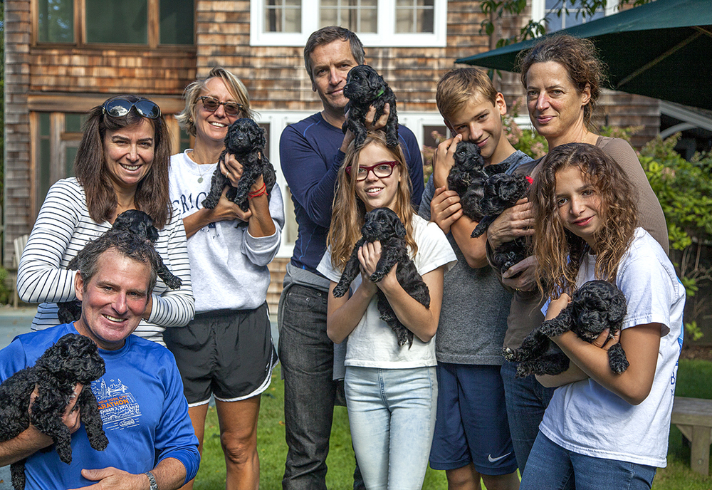 From left to right: 8 people 8 puppies  Steve, Una, Suzanne, James, Lucinda, Quinn, Jane, Flossy