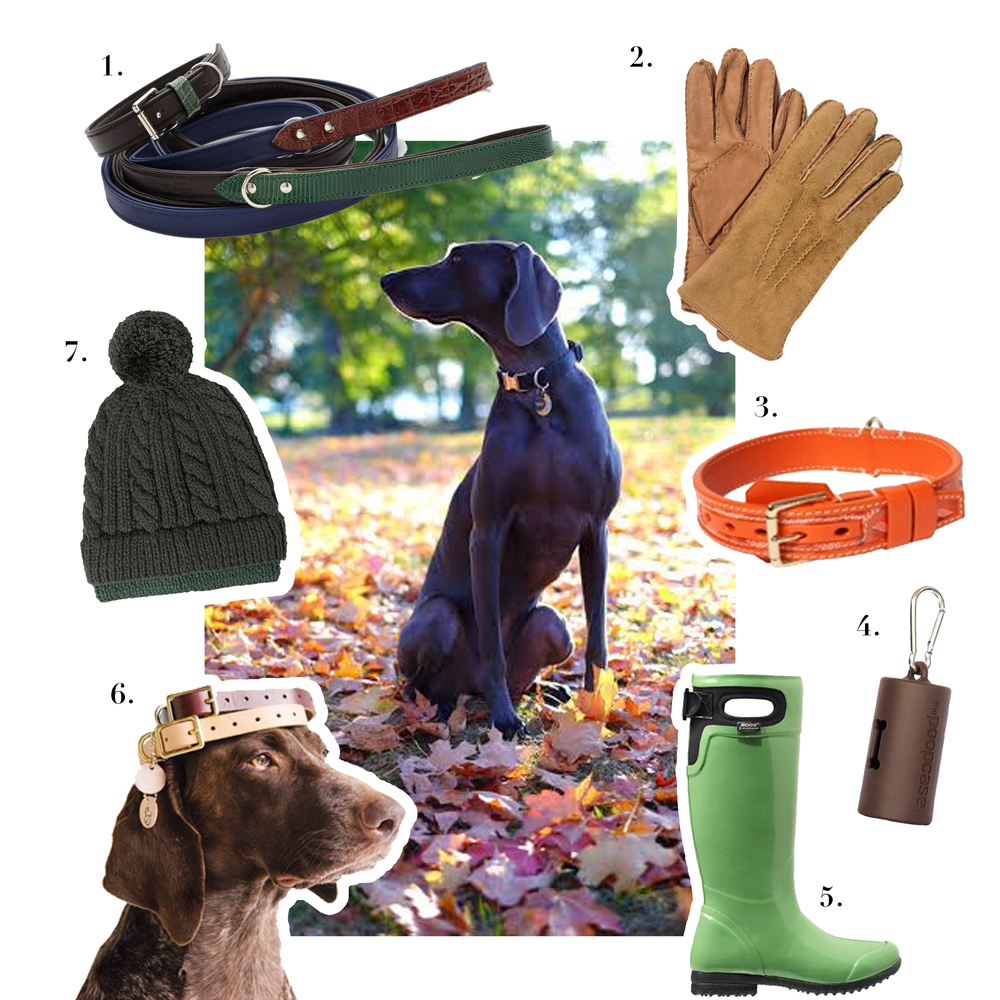 1.   Neue Galerie,    R. Horn Collar and Leash    2. Ralph Lauren Polo,   Shearling and Leather Gloves    3. Goyard,   Orange Franklin   Collar  4. Metropaws,   The PoopCase    5.  Bogs Footwear,    Tacoma Boots      6. Lucy & Co,   Leather Collars      Photo courtesy of  @Ifitwags  7. Richard James,   Hand-Knitted Merino Wool Beanie Hat          Photo of VIOLET by   Greg Delves