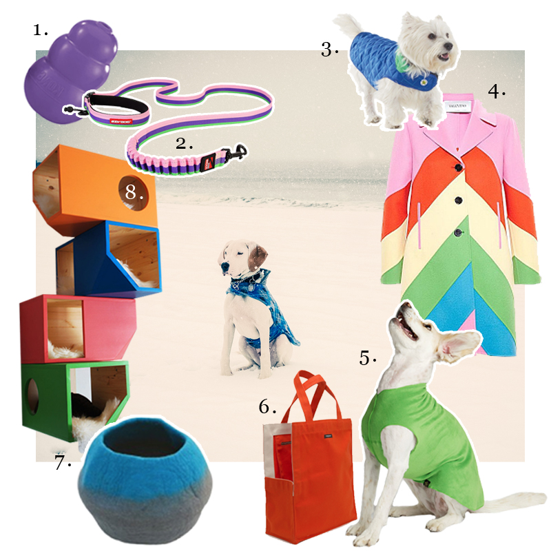 1. Kong Company,   Kong in Purple  2. EzyDog,   Bubble Gum Roadrunner Leash  3. Up Country,   Diamond Quilted Dog Coat in Royal  4. Valentino,   Spring 2015 Collection  5. Gold Paws Series,   Stretch Fleece in Grass Green  6. wagwear,   Shopping Bag Carrier in Red  7. Lollycadoodle,  Cat Cave Large in Blue  8. Catissa,  Colorful House Center photo of  @walterthepointer   by   Michael Rudin   and Walter is wearing a blue argyle coat from    Petco