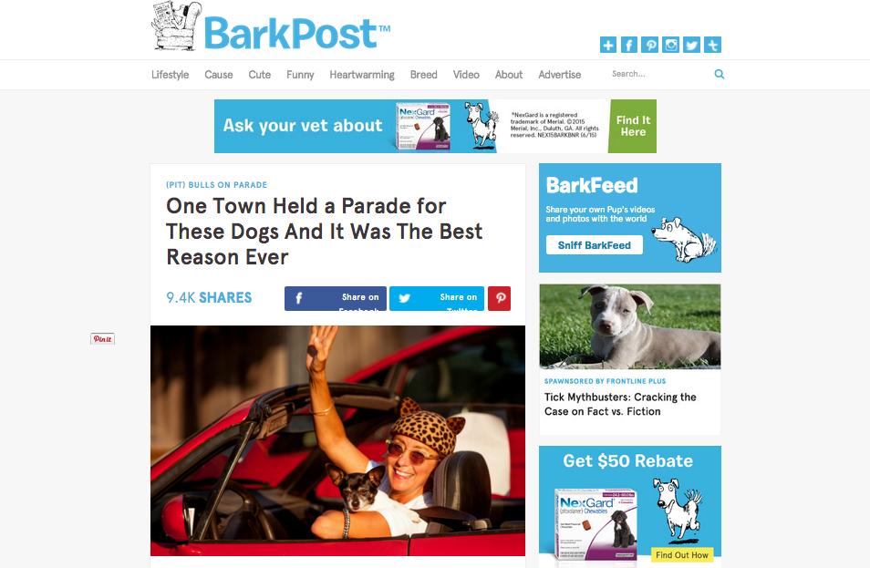 Mrs Sizzle Barkpost.jpg