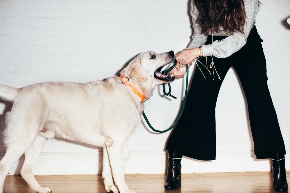 Bosco and Laura Ferrara playing tug of war with their  FILSON  finds! Shoes: FENDI.