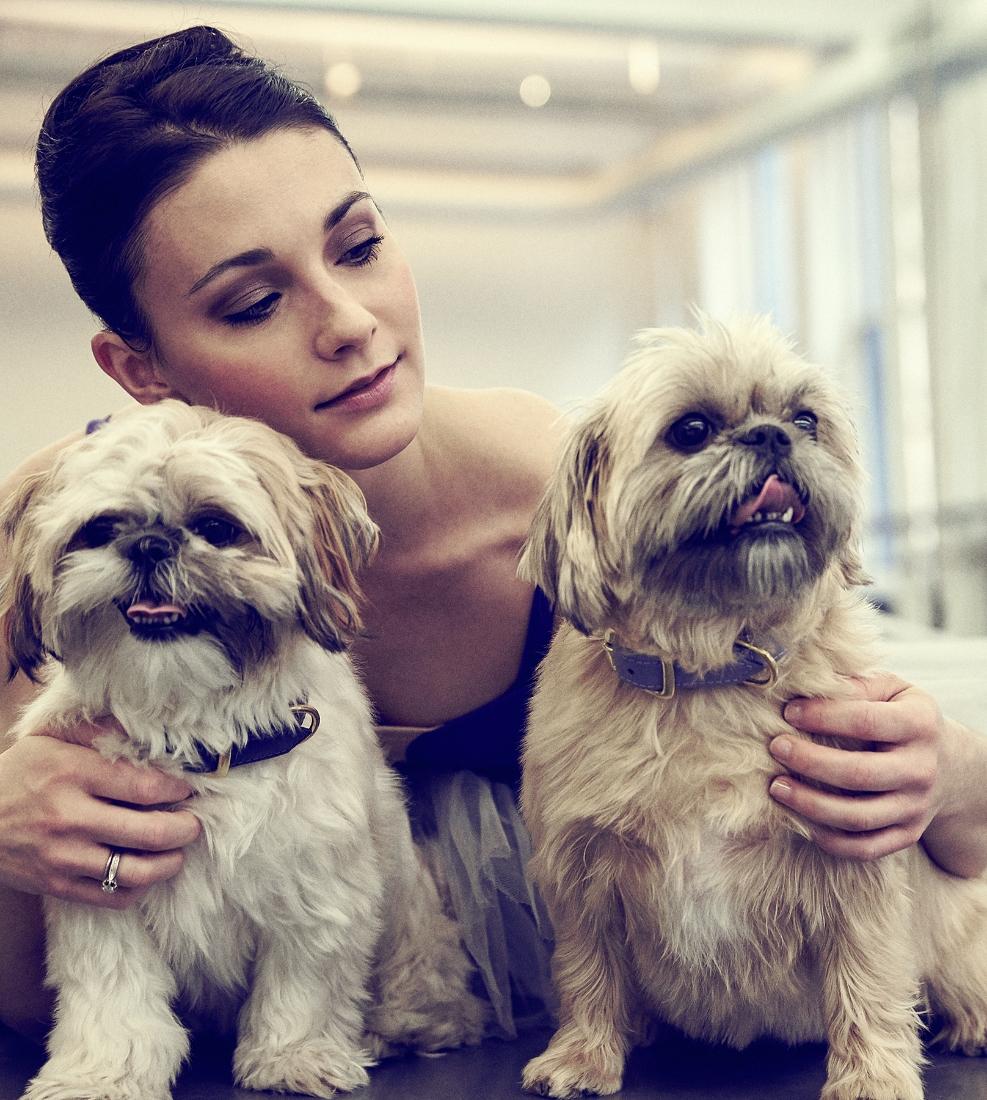 Sarah, Maya and Cora collars: Hound Collection