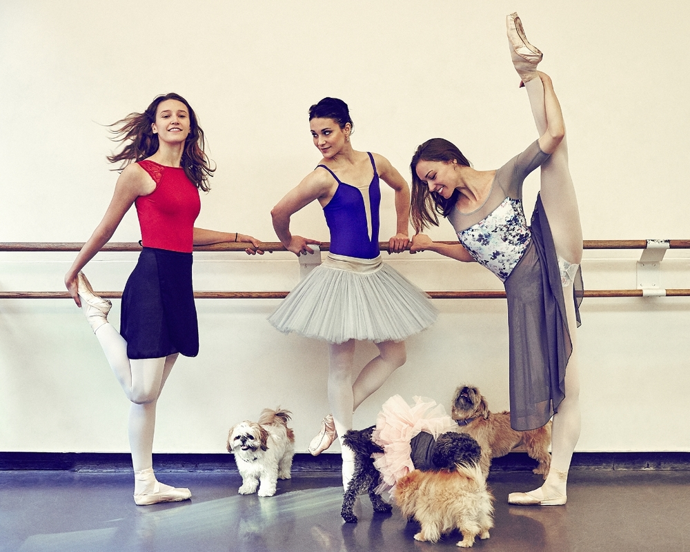 Devon Tuescher, Sarah Lane, Sarah Smith and their dogs