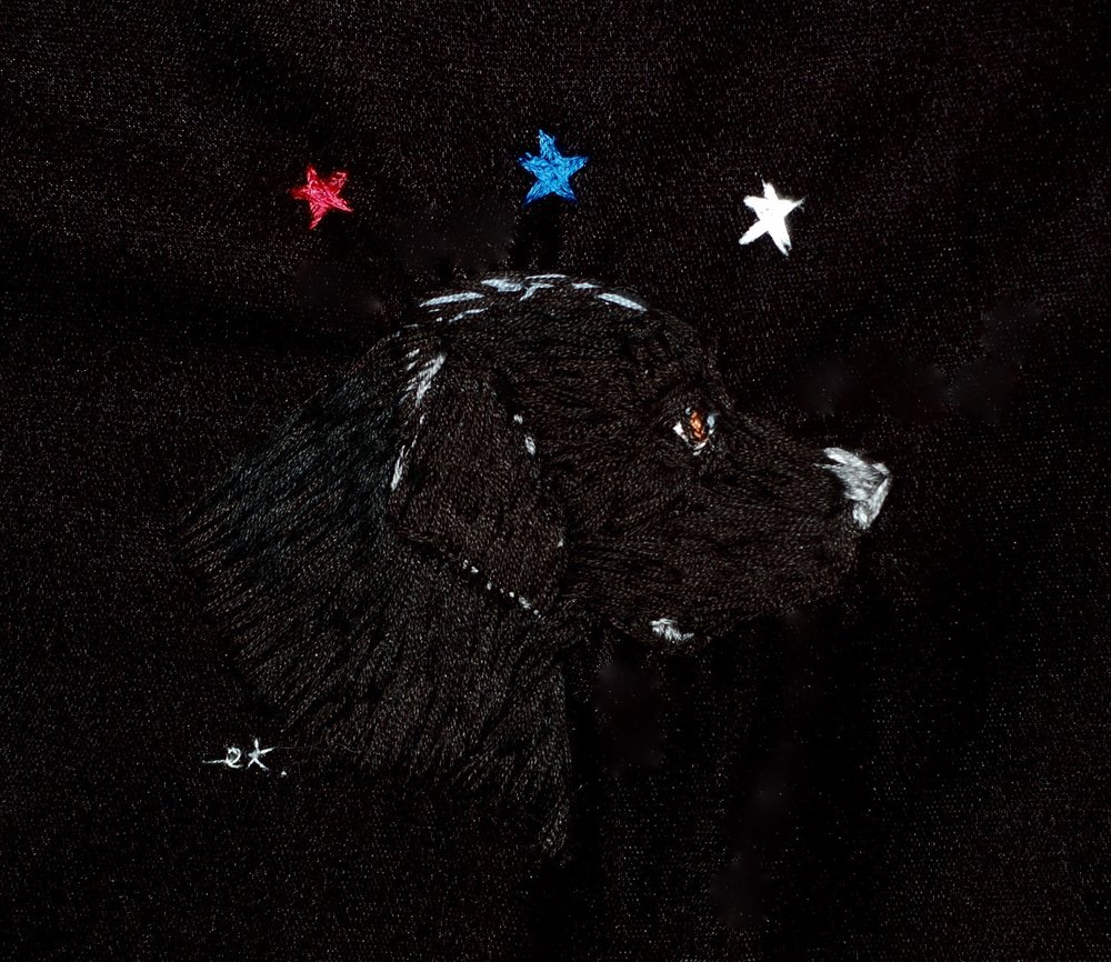 "America's Dog, 2016 silk on velvet 6 1/2"" x 6 1/2"""