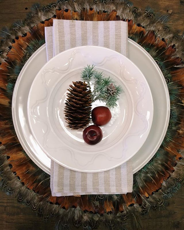 These feather placemats are perfect for your fall table setting!!