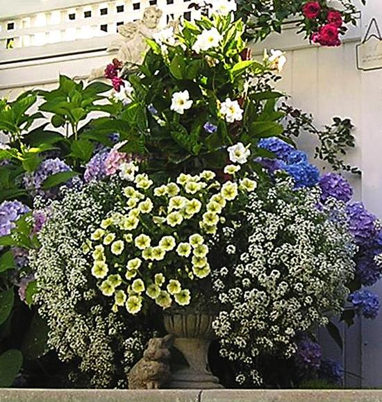 for Garden design by kristen