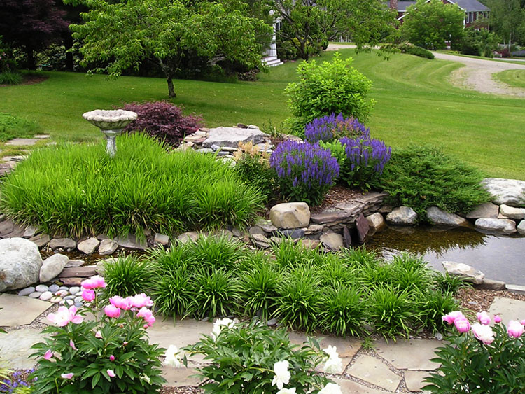 Natural pond gardens with waterfall